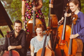 cello-136