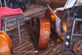cello-257
