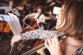 cello-285