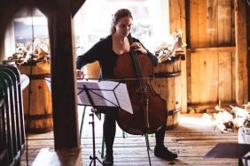 cello-379