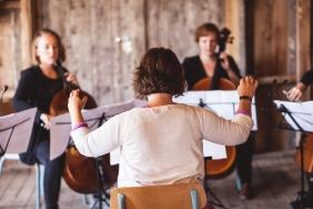 cello-385