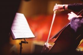 cello-51