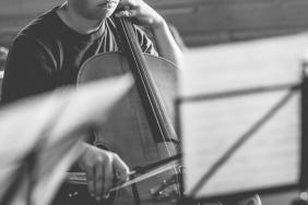cello-181