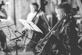 cello-391