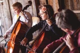 cello-393